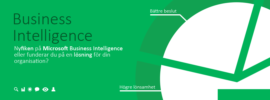 Microsoft Business Intelligence image